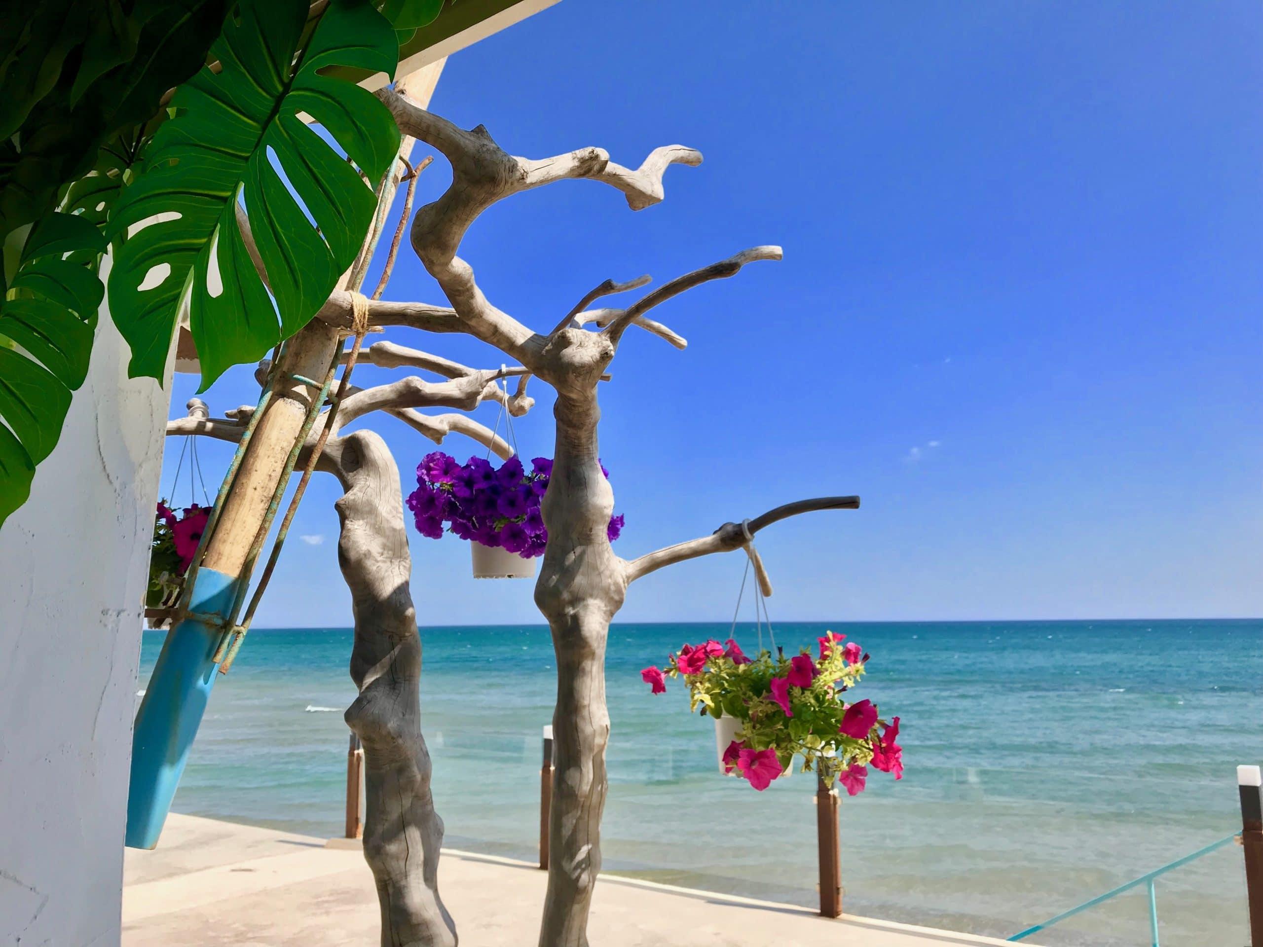 Costa Blanca Immobilien Strand Altea